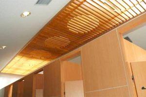 Nihondaira Parking Area's restroom