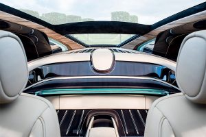 Inside the Sweptail