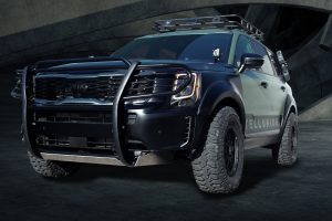 A customized version of the Telluride