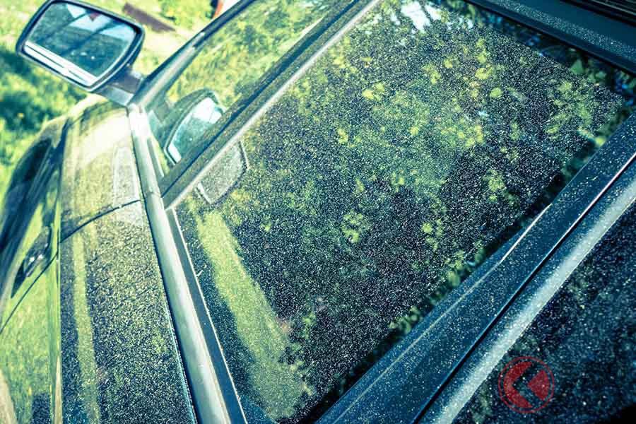 ボディやガラスについた花粉は取れにくい